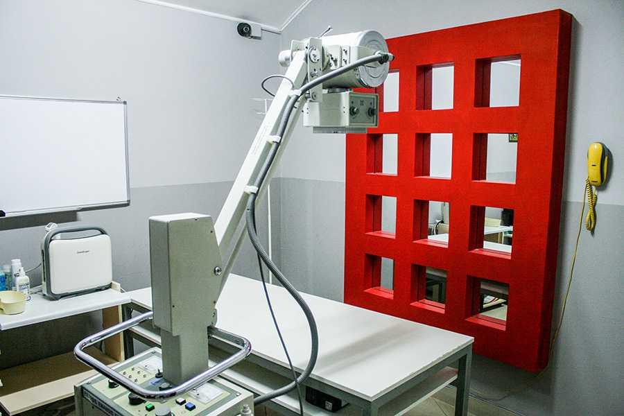 Рентген кабінет для тварин у Львові