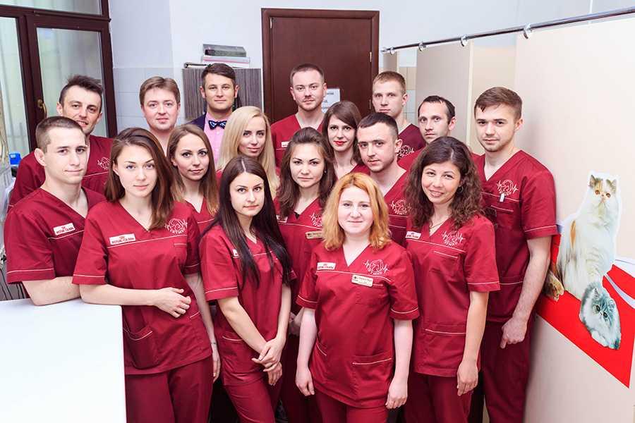 Найкращі ветеринари Львова